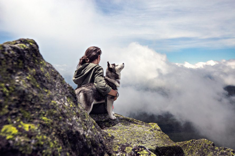 4 Skills You Acquire From Owning a Dog in Your Twenties hertrack.com
