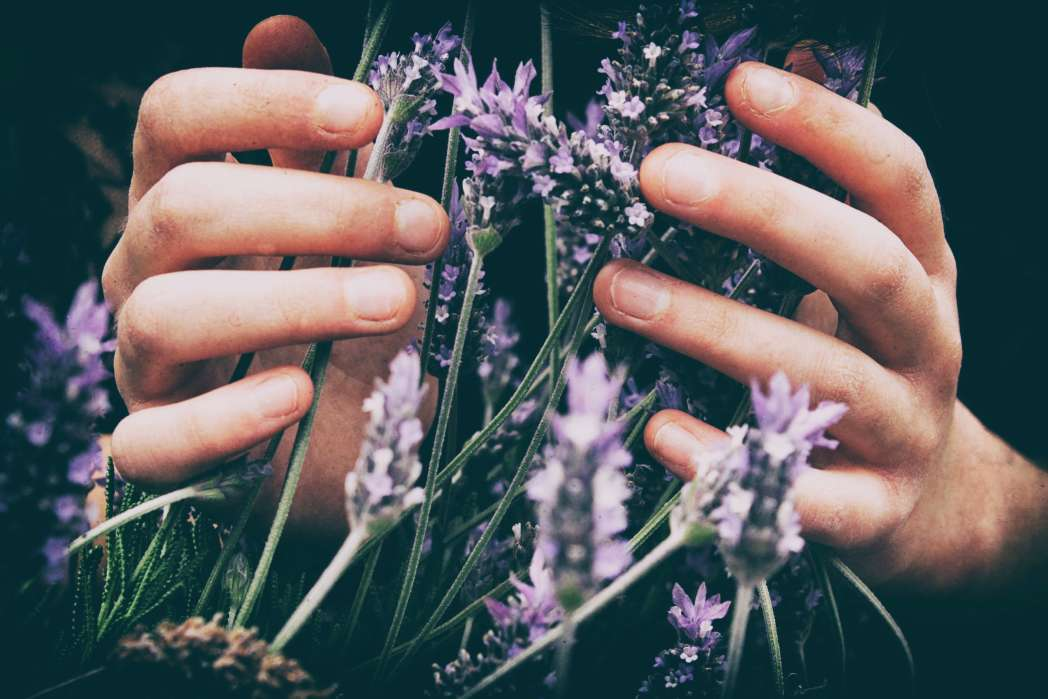 10 Ways To Use Essential Oils in Your Everyday Life Feature Image